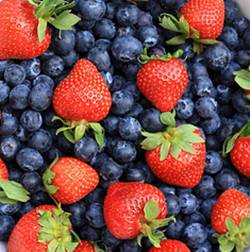 berries can be used in homemade skin care recipes